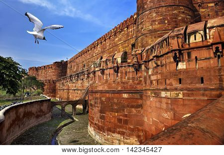 India. Agra . Red fort in a sunny day