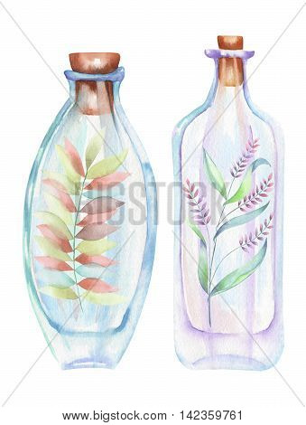 Illustration romantic and fairytale watercolor bottles with forest branches with leaves and flowers inside, hand drawn isolated on a white background
