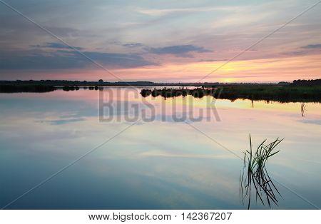 serene summer sunset on wild lake, netherlands