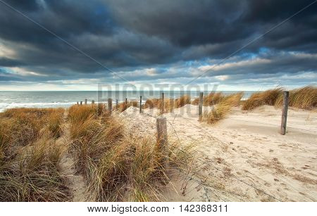 sand path on the dune to North sea Netherlands