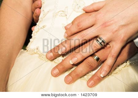 Romantic Hands With Wedding Rings