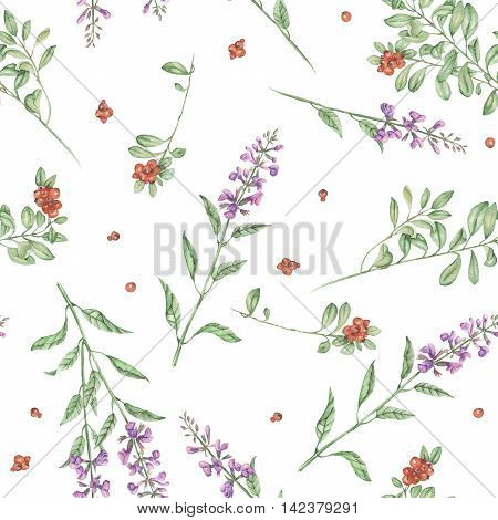 Seamless floral pattern with cowberry and salvia flowers, hand drawn in watercolor on a white background