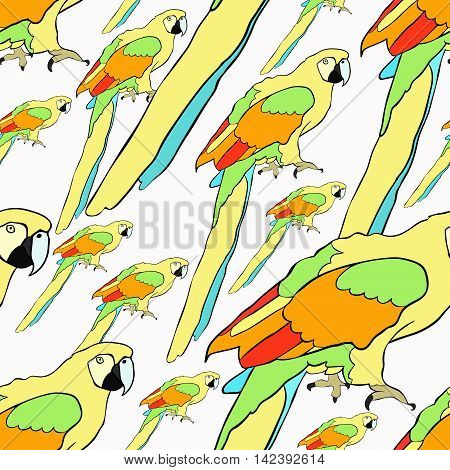 Seamless Pattern Yellow Parrot The Caribbean. Vector Illustration
