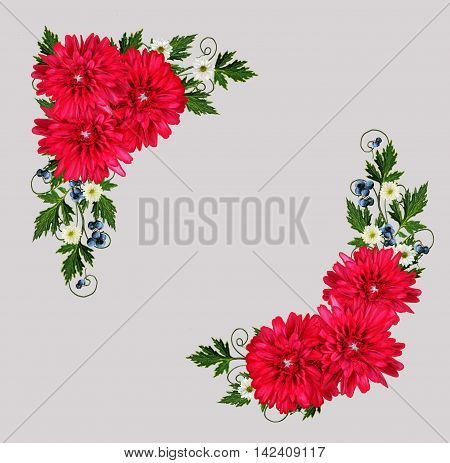 Autumn Flower composition. Autumn Flower composition. Bouquet of red flowers of chrysanthemums and blue berries. Light wood texture.