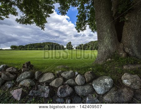 Underneath a large tree is a stone wall and view to a lush green field and blue sky