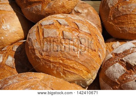 Traditional baked bread. Round loafs on food market.