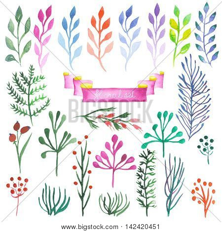 Set, collection of abstract floral elements, painted in watercolor on a white background