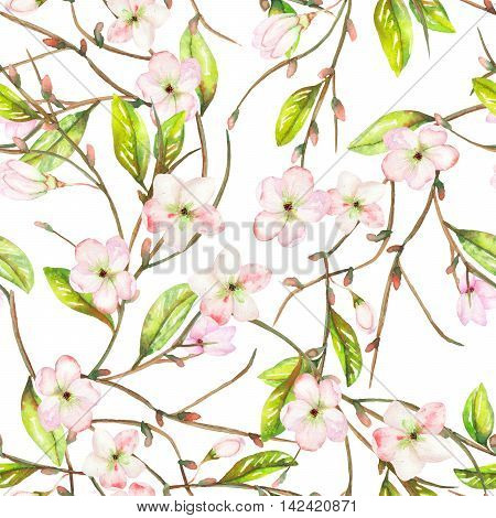 A seamless floral pattern with an ornament of an apple tree branch with the tender pink blooming flowers and green leaves, painted in a watercolor on a white background