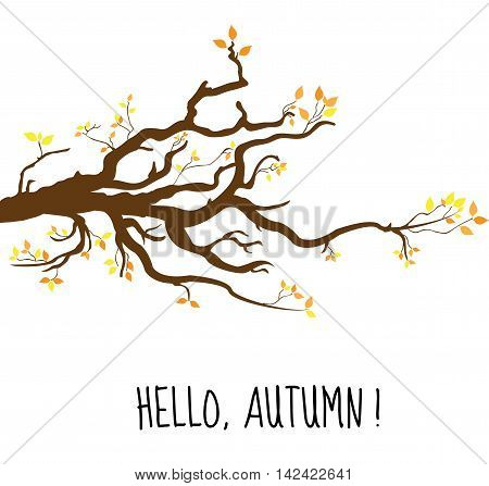 Hello Autumn. Branch a tree in autumn autumn tree with yellow leaves. Vector illustration.