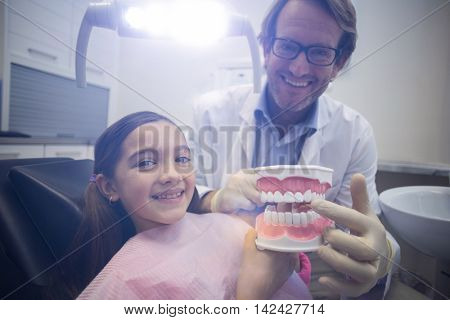 Portrait of dentist showing model teeth to patient in dental clinic
