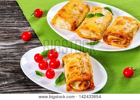 rolled pancakes or crepes stuffed with minced meat and vegetables on oval dishes served with cherry tomatoes and basil view from above