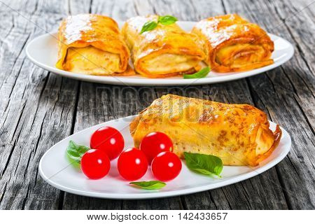 rolled pancakes or crepes stuffed with minced meat mushrooms and vegetables on oval dishes served with cherry tomatoes and basil view from above close-up