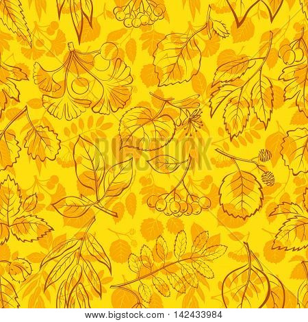 Seamless Nature Background with Autumn Tree Leaves Contours and Silhouettes, Willow, Hawthorn, Poplar, Aspen, Ginkgo Biloba, Elm, Alder, Linden, Rowan, Chestnut, Black Chokeberry and Beech. Vector