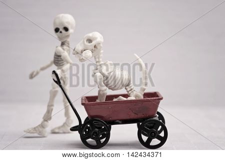 Skeleton child pulling dog in red wagon