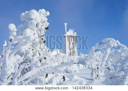 bright cloudless sky, a winter wonderland on the Fichtelberg in the Ore Mountains in Saxony, Germany, behind thick snowy bushes the weather station