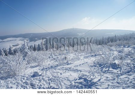 thick frosted bushes and spruces on the Fichtelberg im Erzgebirge in Saxony, Germany, in the background of Klinovec in the Bohemian part of the Ore Mountains, winter wonderland