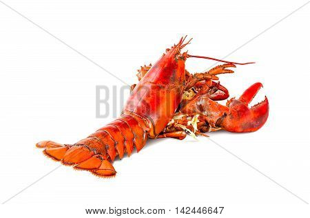 steamed lobster chinese luxury seafood isolated on white background
