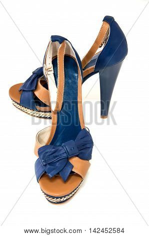 Pair of womens high heeled shoes on white background.
