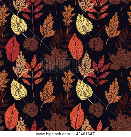 Hand Drawn Vector Illustration. Seamless Pattern With Fall Leaves. Forest Background. Colors Of Autu