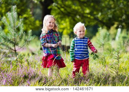 Kids playing in autumn park. Children play outdoors on a sunny fall day. Boy and girl running together hand in hand in a forest. Toddler and preschooler pick colorful oak leaf. Family fun outdoor.