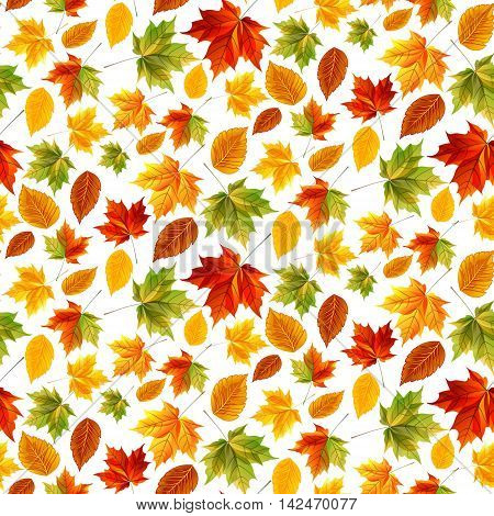 Bright pattern for web design and design sites. Design template autumn leaves maple leaves yellow green red leaves. Vector illustration