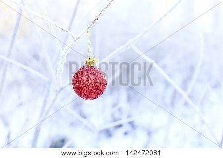 red Christmas ball hanging on snow branch. one red Christmas ball. the concept of loneliness during the holidays. empty space for your text