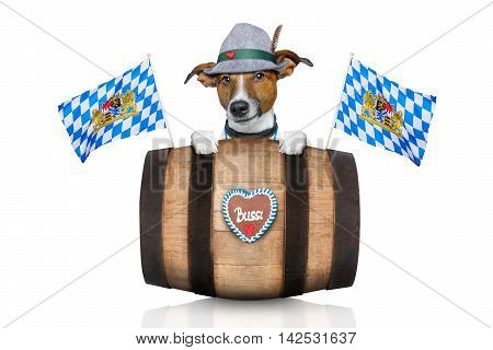 bavarian german jack russell dog with gingerbread and hat behind barrel isolated on white background ready for the beer celebration festival in munich