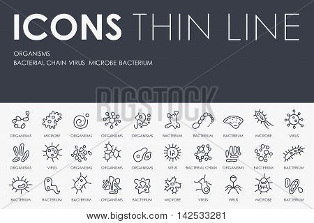 Thin Stroke Line Icons of Organisms on White Background