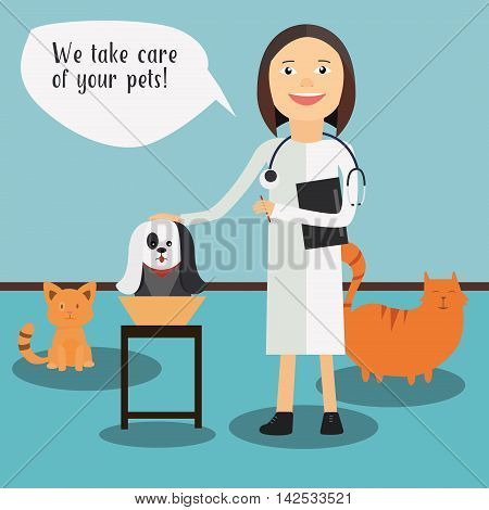 Veterinary concept with doctor medical examination of dog.