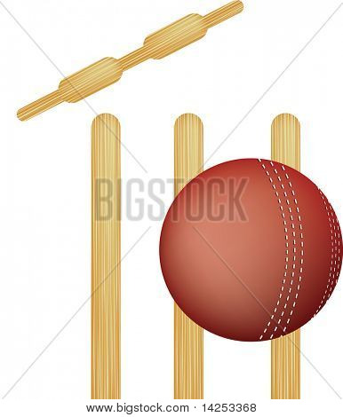 simple icon style illustration of cricket stumps and ball