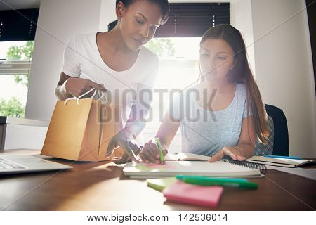 Two young female business partners designing packaging and branding for their online products sketching new ideas for brown paper bags in the office