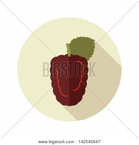 Blackberry bramble flat icon. Berry fruit. Vector illustration eps 10