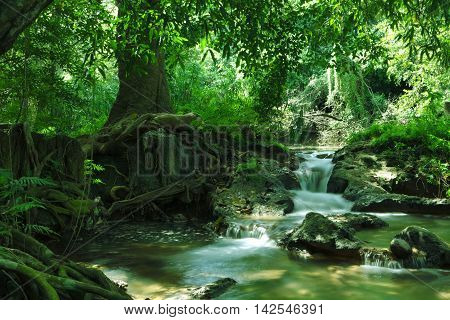 panorama view of nice waterfall and pond in green tropical environment