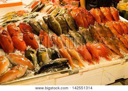 Various kind of fish at fish market