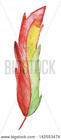 Hand-drawn Watercolor red Feather isolated on white background
