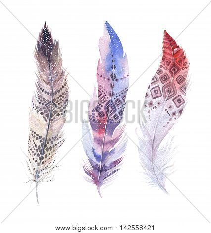 Hand drawn watercolor paintings vibrant feather set. Boho style wings. illustration isolated on white. Bird fly design for T-shirt invitation wedding card.Rustic Bright colors.