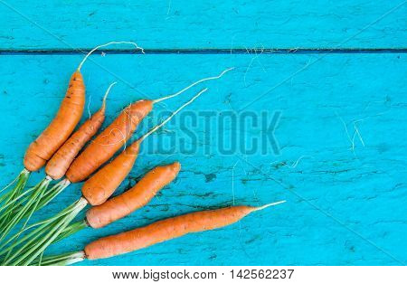 Carrots With Tops Of Vegetable Beam On A Blue Wooden Background