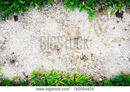 Grass Frame On Sand Background