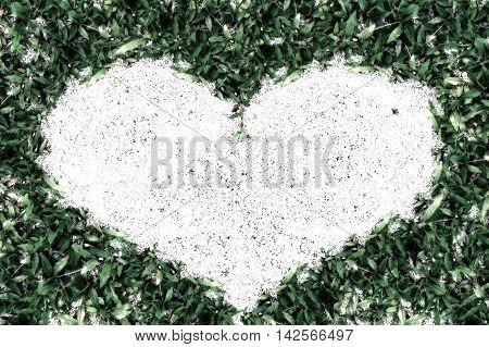 Green Grass Frame Sand In Heart Shape