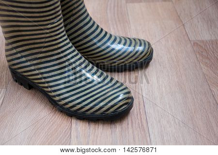 the concept of the fall, work in the garden, place for text, striped rubber boots for work or walking rainy weather. top view point. rain boots. wellington boots.