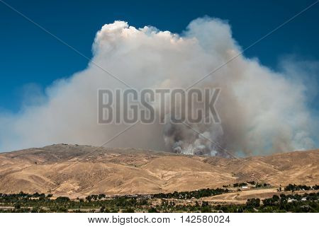 Dense Smoke Rising from the Raging Wildfire