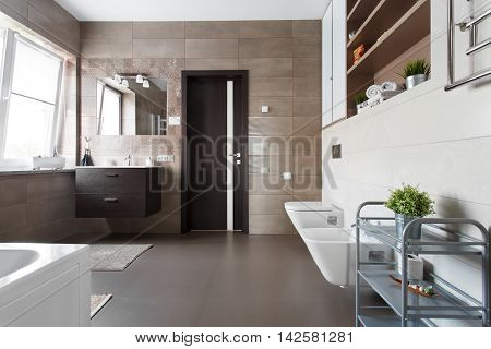 Spacious bathroom with toilet bidet and washbasin in brown tones