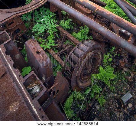 Overgrown rusty mechanisms on island Geltuhina. Russia