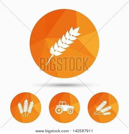 Agricultural icons. Wheat corn or Gluten free signs symbols. Tractor machinery. Triangular low poly buttons with shadow. Vector