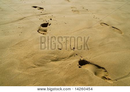 huellas en la arena húmeda