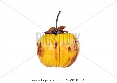 Garcinia Cambogia Fruit, Isolated On White. Fruit For Diet And Good Health.