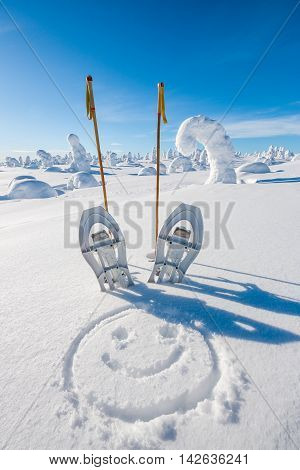Snow shoes in fell on sunny day
