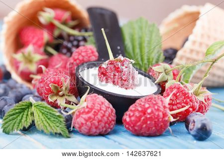 Waffles with fresh berry fruit. Fruit Background