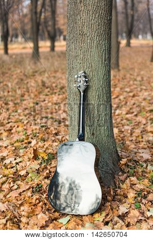 Guitar instrument musical object on autumn leaves