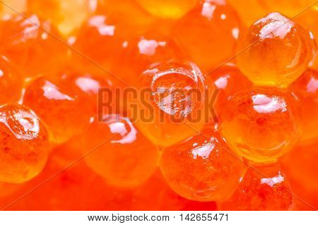 a background made of red caviar macro